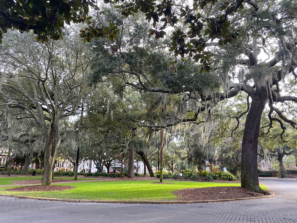 Savannah Georgia itinerary things to see literary sites book lovers indie bookstores