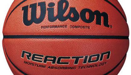 wilson reaciton ball.jpg