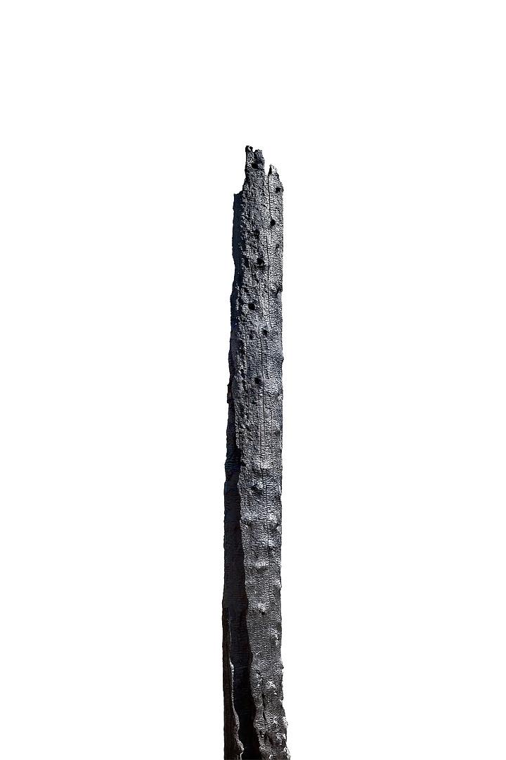 L1000051