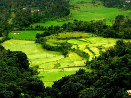 5 Best Monsoon Destinations In Karnataka