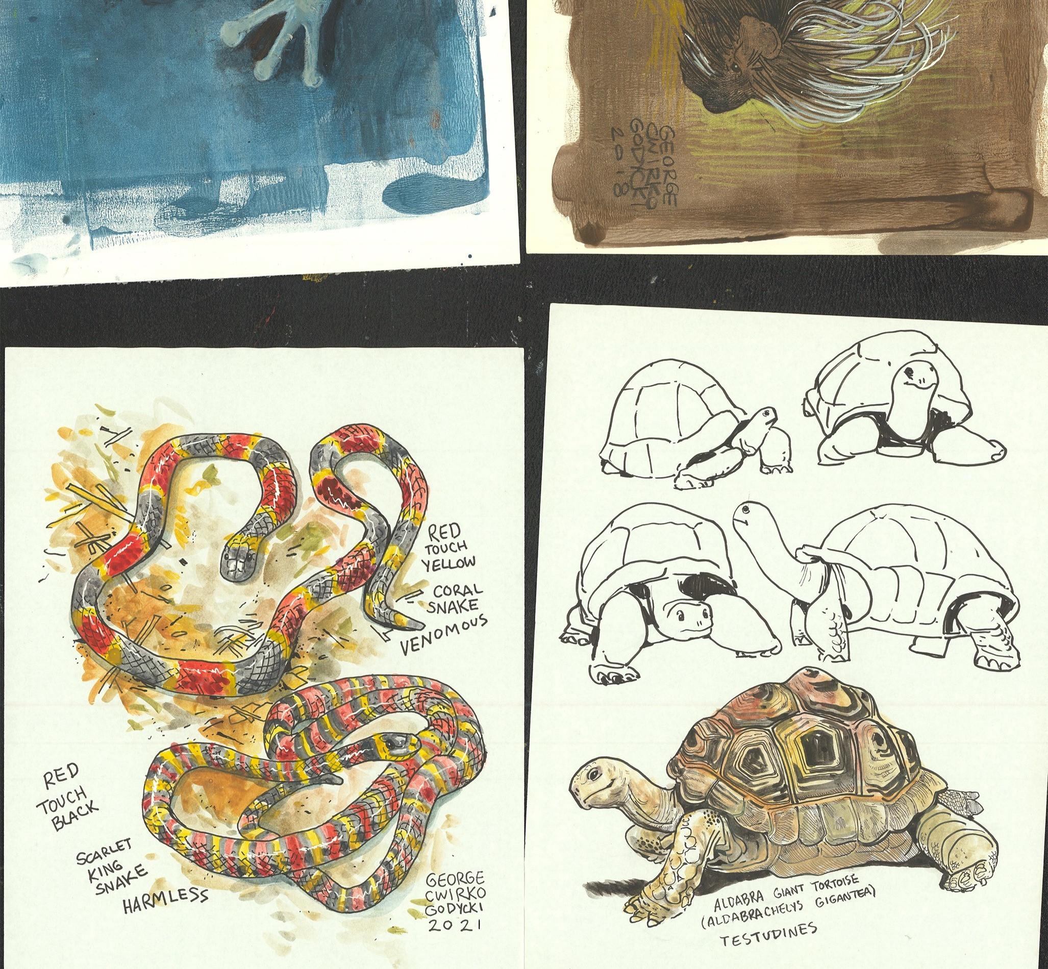 Sketchbook - Zine