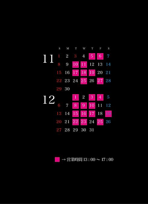 2020オペラ11月-12月カレンダー.png