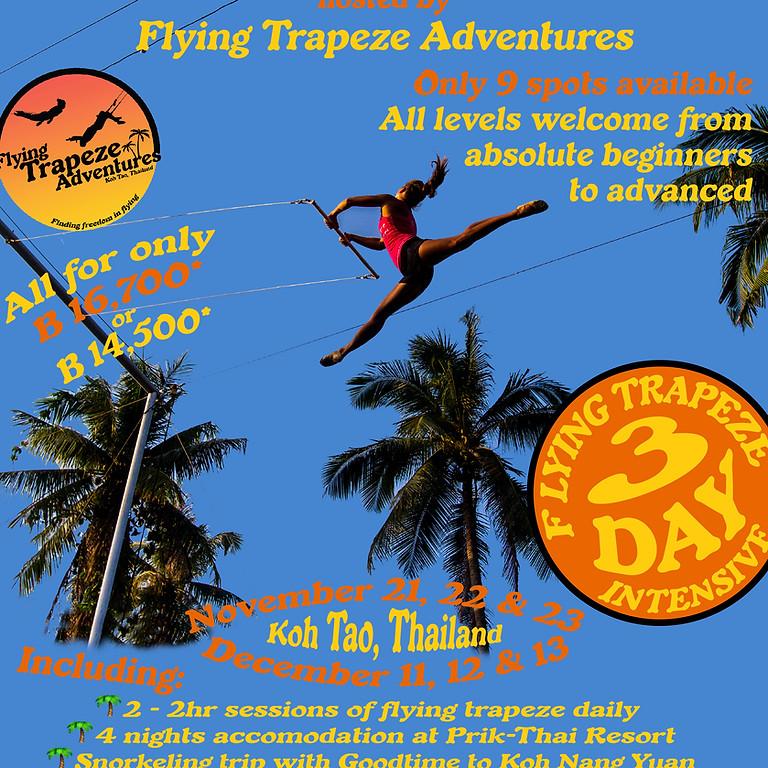 December Beginner Flying Trapeze Intensive