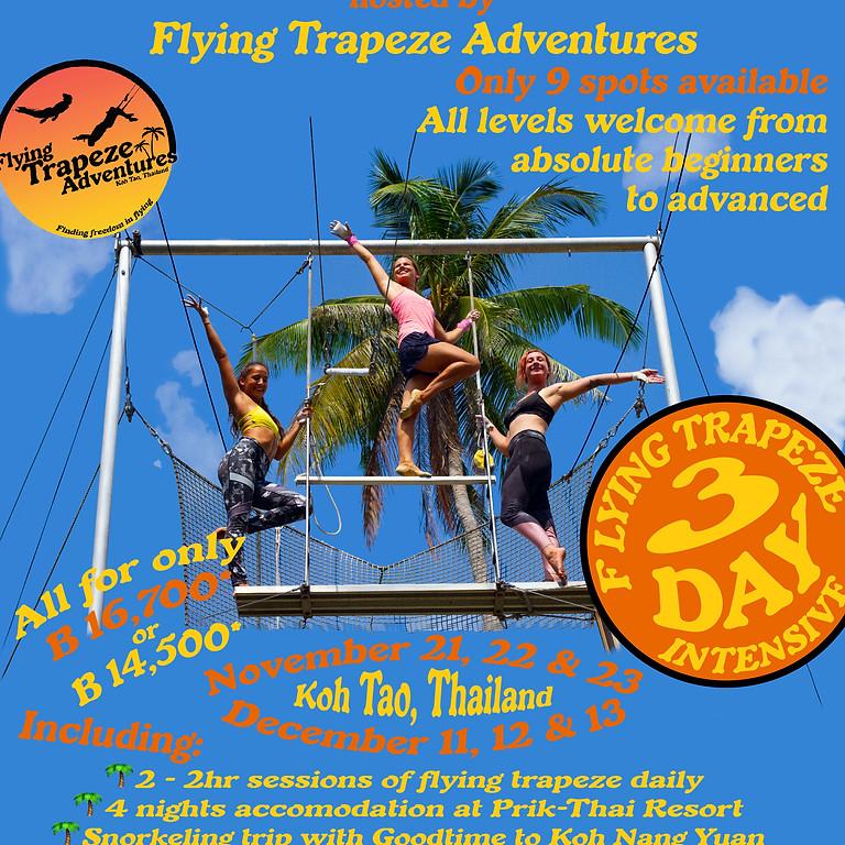 November Beginner Flying Trapeze Intensive