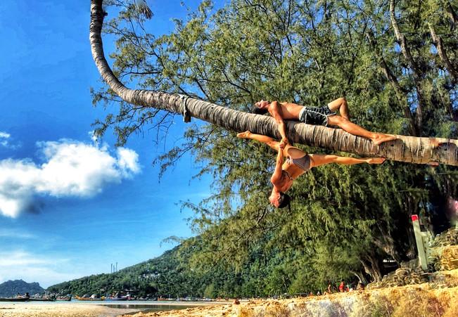 Coconut Circus