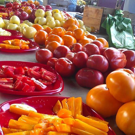 Tomato Season!