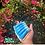 Thumbnail: Blue Crush Lip Jelly