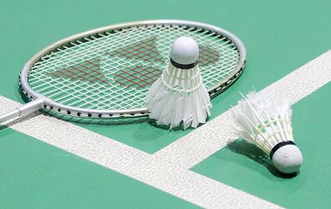 "Docs ""Badminton"""