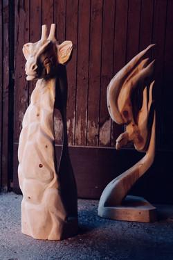 Jirafa y halcón en Cedro