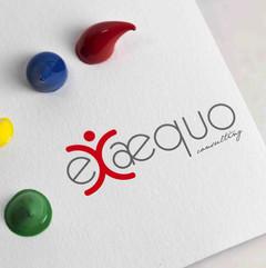 ExAequo Consulting