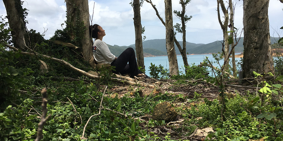 Forest Bathing, Medicine for the Soul