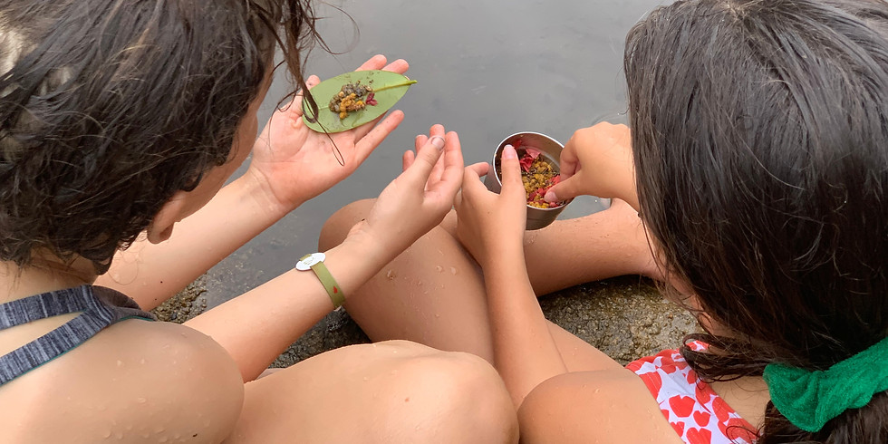 One-on-One Gaia Mentoring for Girls (3- 6pm)