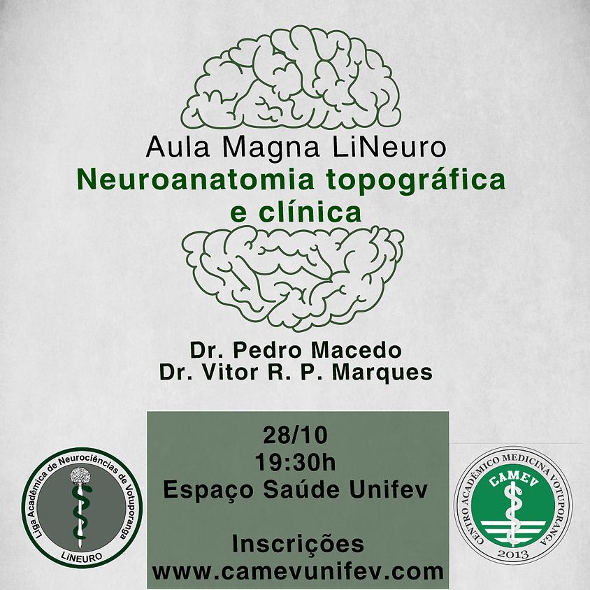Aula Magna LiNeuro - Neuroanatomia topográfica e clínica