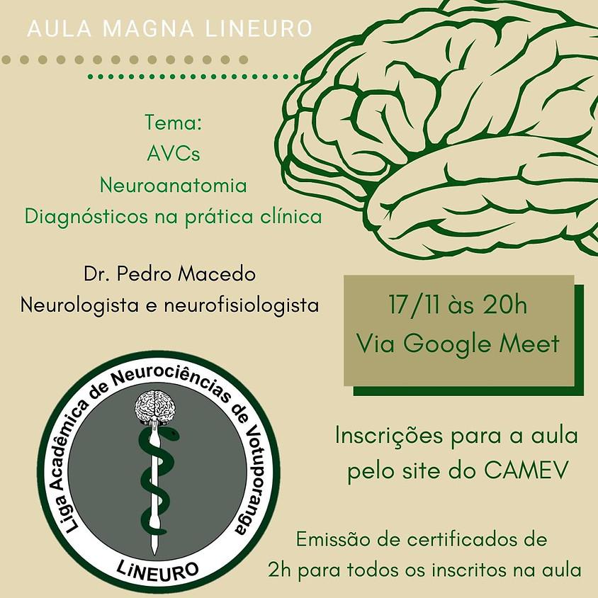 """Aula Magna """"Neuroanatomia, AVCs e diagnóstico neurológico na prática"""""""