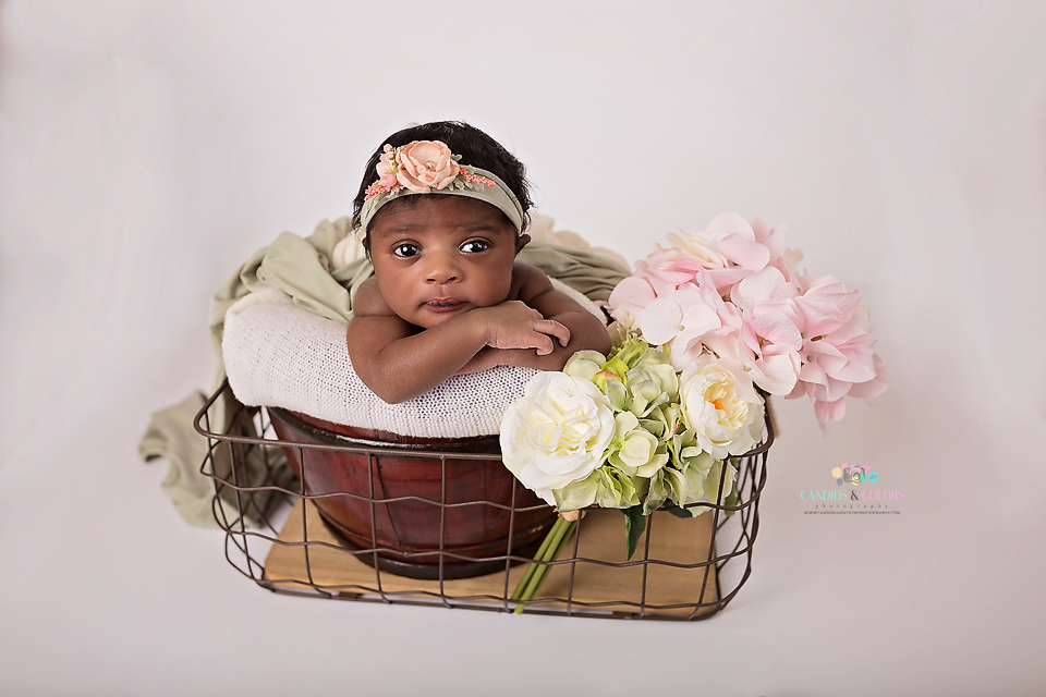 Laurel Newborn Photographer