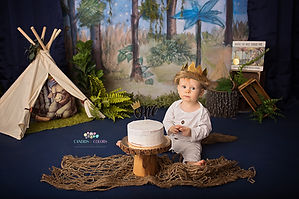 Where the Wild Things Are Cake Smash