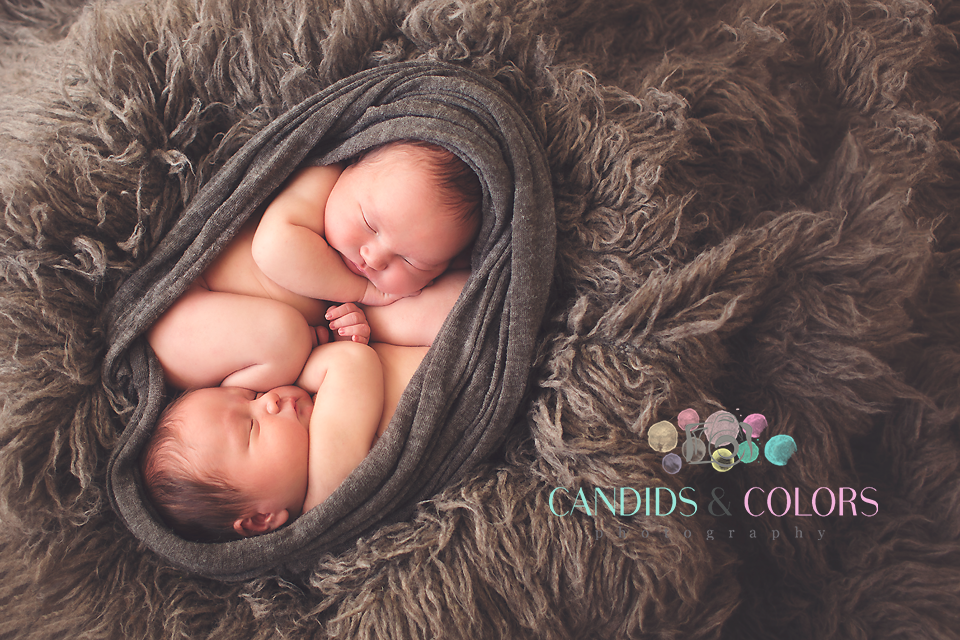 Maryland Newborn Twins Photographer