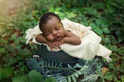 Outdoor Newborn Photos