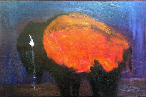 Sun Buffalo