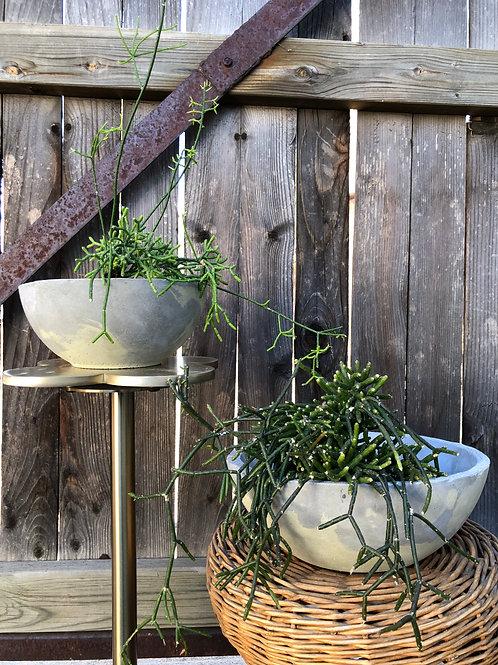 Light Grey/Moss Planters