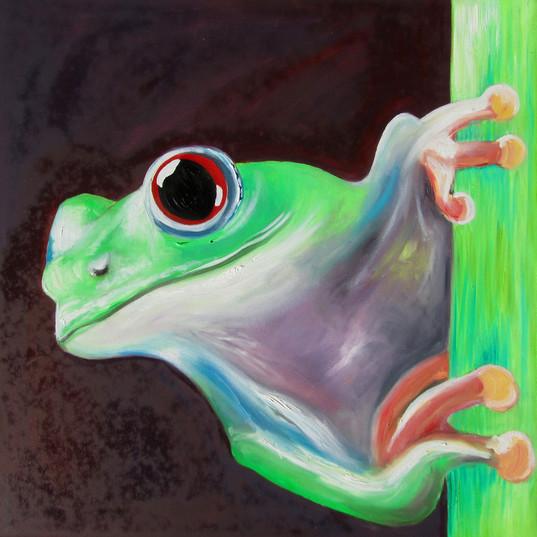 Frog1_45x45_12.jpg