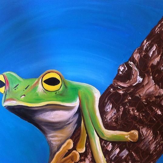 Frog6_50x50_13.jpg
