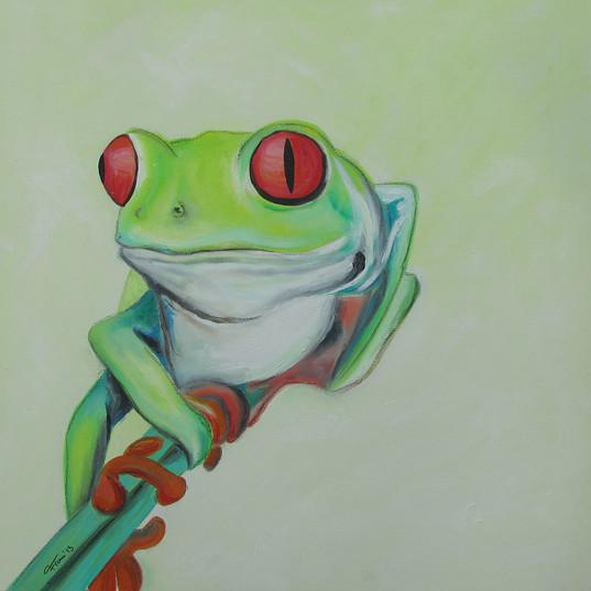 Frog5.2 50x50_13.jpg