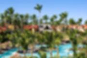 Palmiers au milieu de bassins d'eau