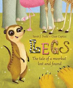 Legs cover.jpg