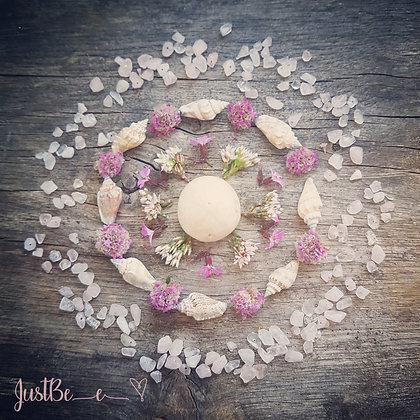 Sand Dollar, shells and Thrift Mandala Print