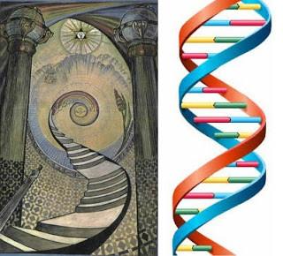L'échelle de Jacob est cachée dans la  double hélice de notre ADN
