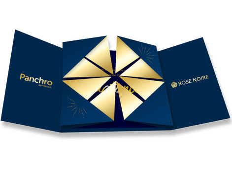 Panchro-RN_Carte-Voeux_2019__SIMU_2.jpg