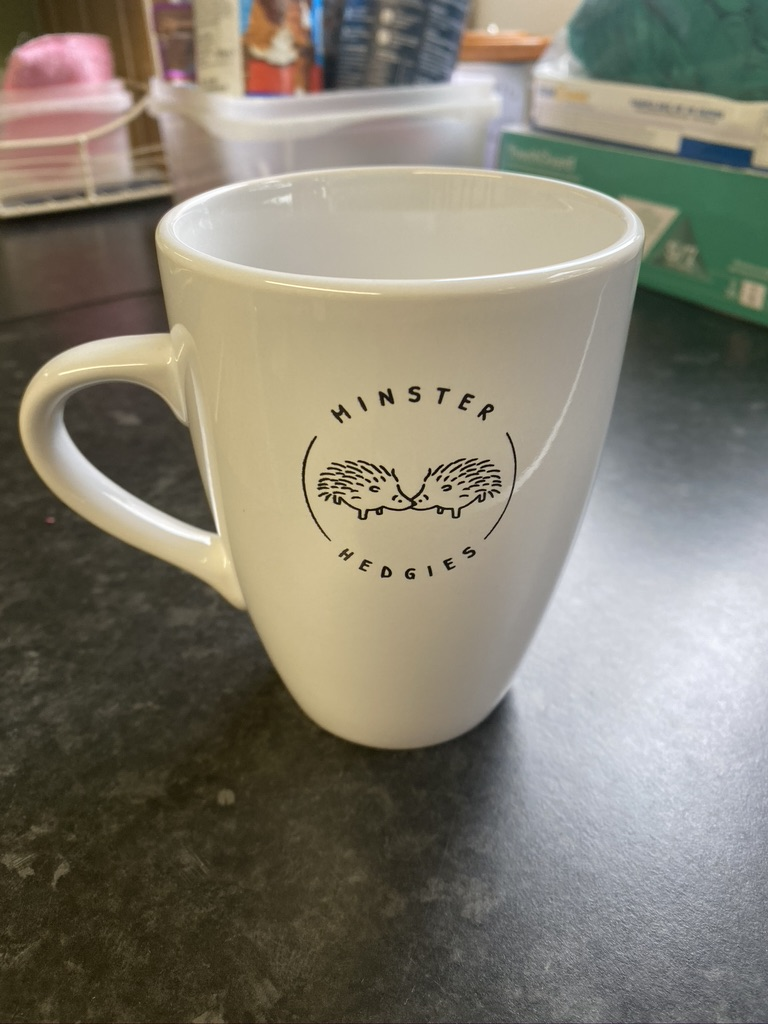 £8 Minster Hedgies LOGO MUG