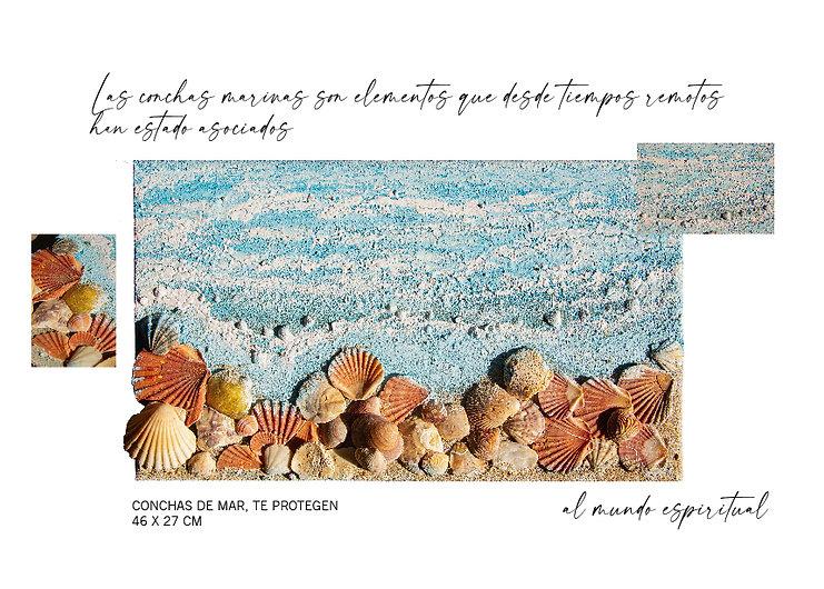 Arte y crecimiento personal.conchas.jpg