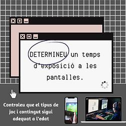 DETERMINEU_un_temps_d'exposició_a_les_p