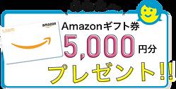 myamazon-5000.png