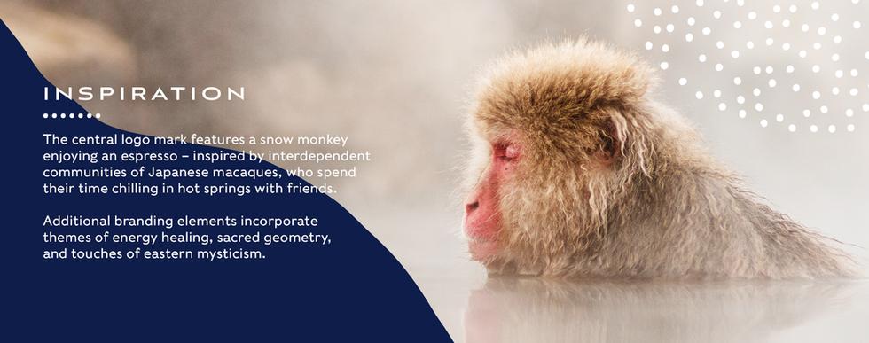 monkey_logo_copy copy.png