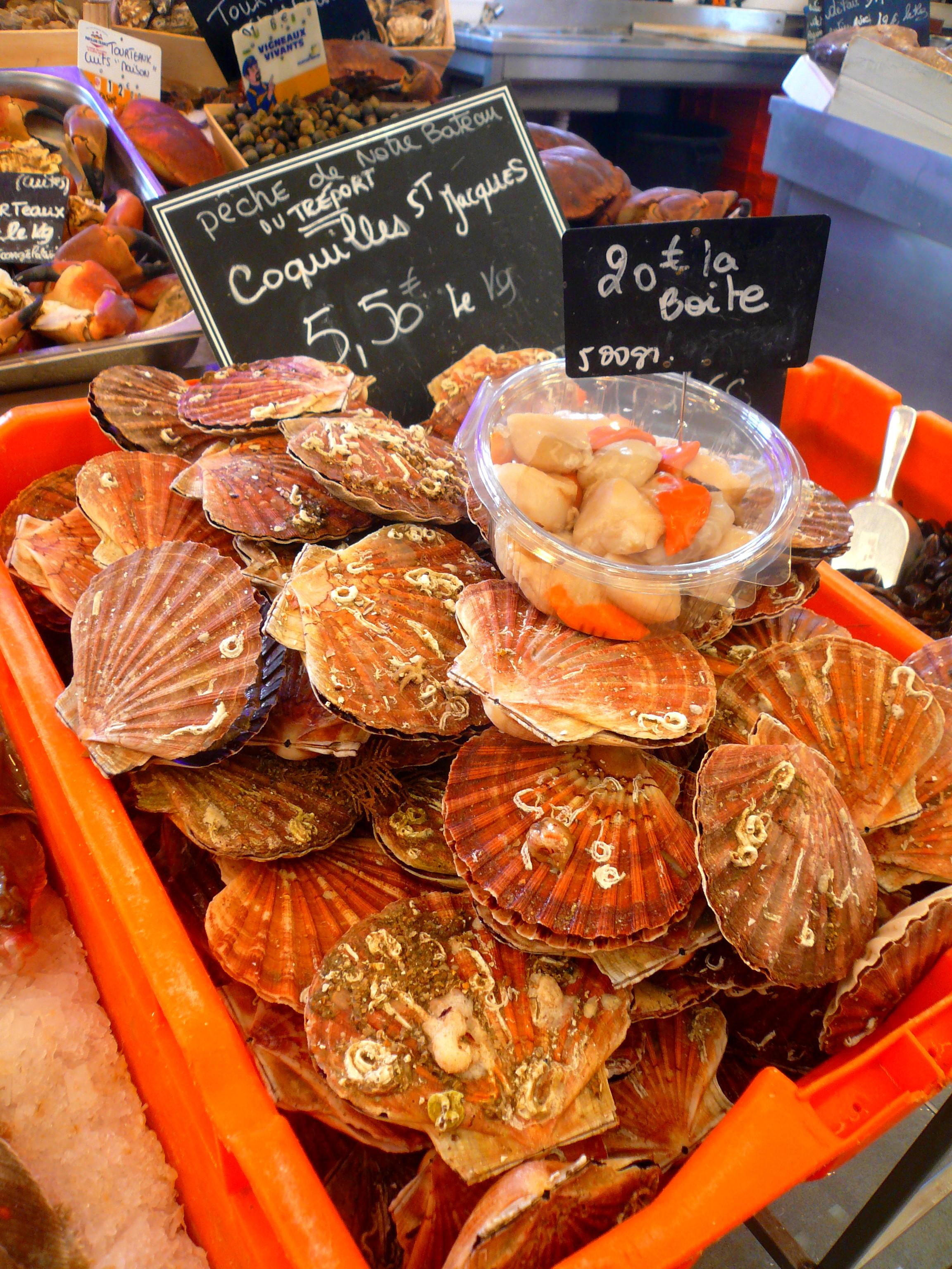 Fête aux coquilles St Jacques / Nov.