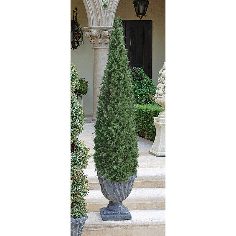 Wayfair The+Cone+Topiary+in+Urn