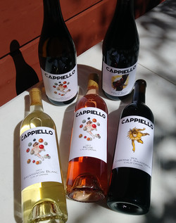 all five bottles