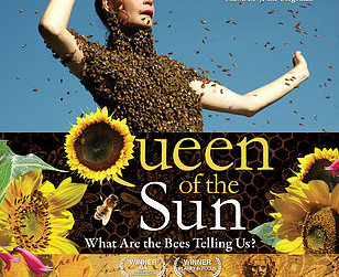 KINO - Queen of the Sun: What Are the Bees Telling Us?