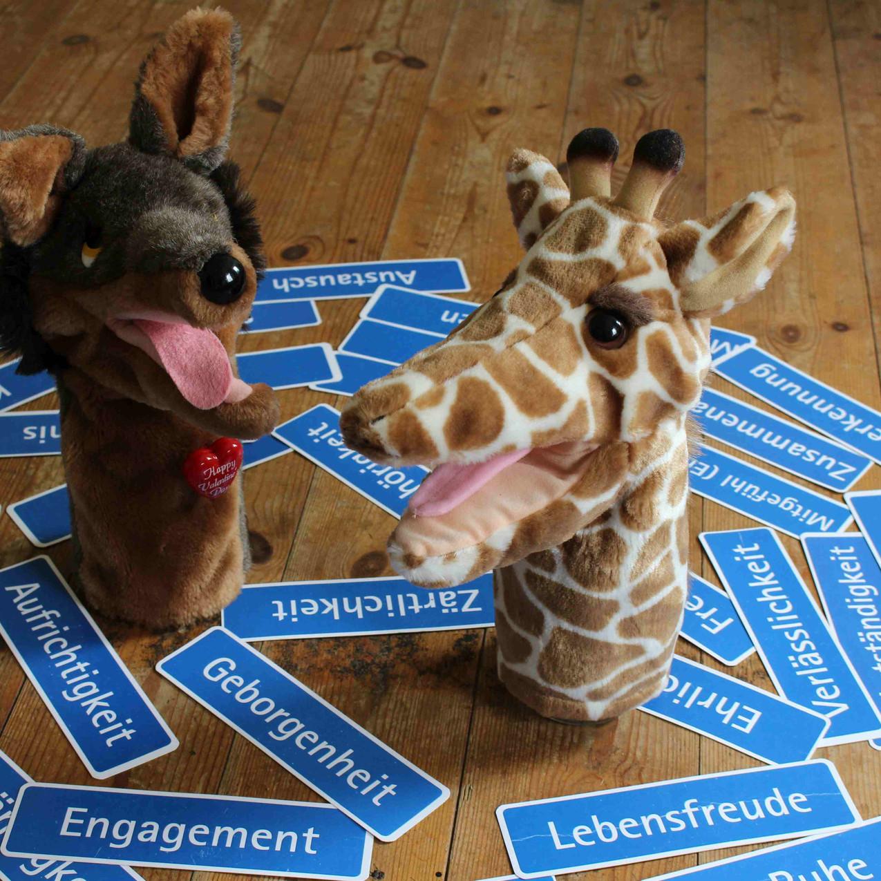 giraf_schaka_100617b