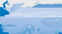 New UNEP Report Outlines Blue-Green Economy and Island Innovation Opportunities in Small Island Deve