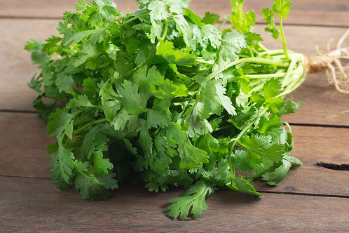 Coriander per bunch