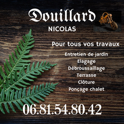 DOUILLARD N.