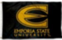 emporia_state_flag.jpg
