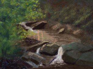 """Evening Light on Hedges Creek"""