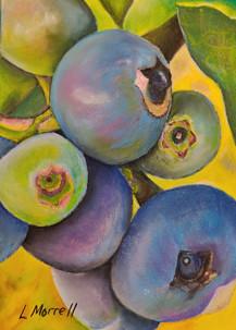 """Blueberry Morning"""