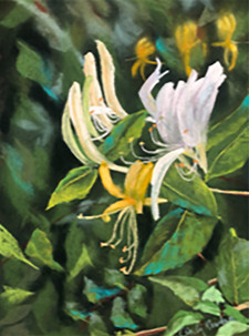 """Honeysuckle Summer"""