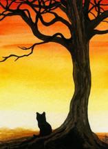 Feline Serenity 3
